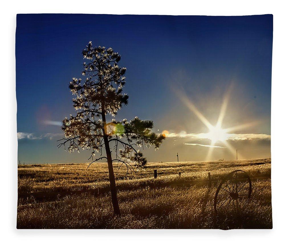 Landscape Fleece Blanket featuring the photograph Winter Sun by Alana Thrower