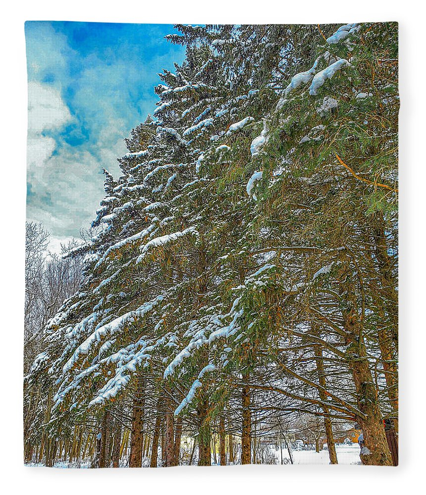 Nature Fleece Blanket featuring the photograph Winter trees by M Forsell