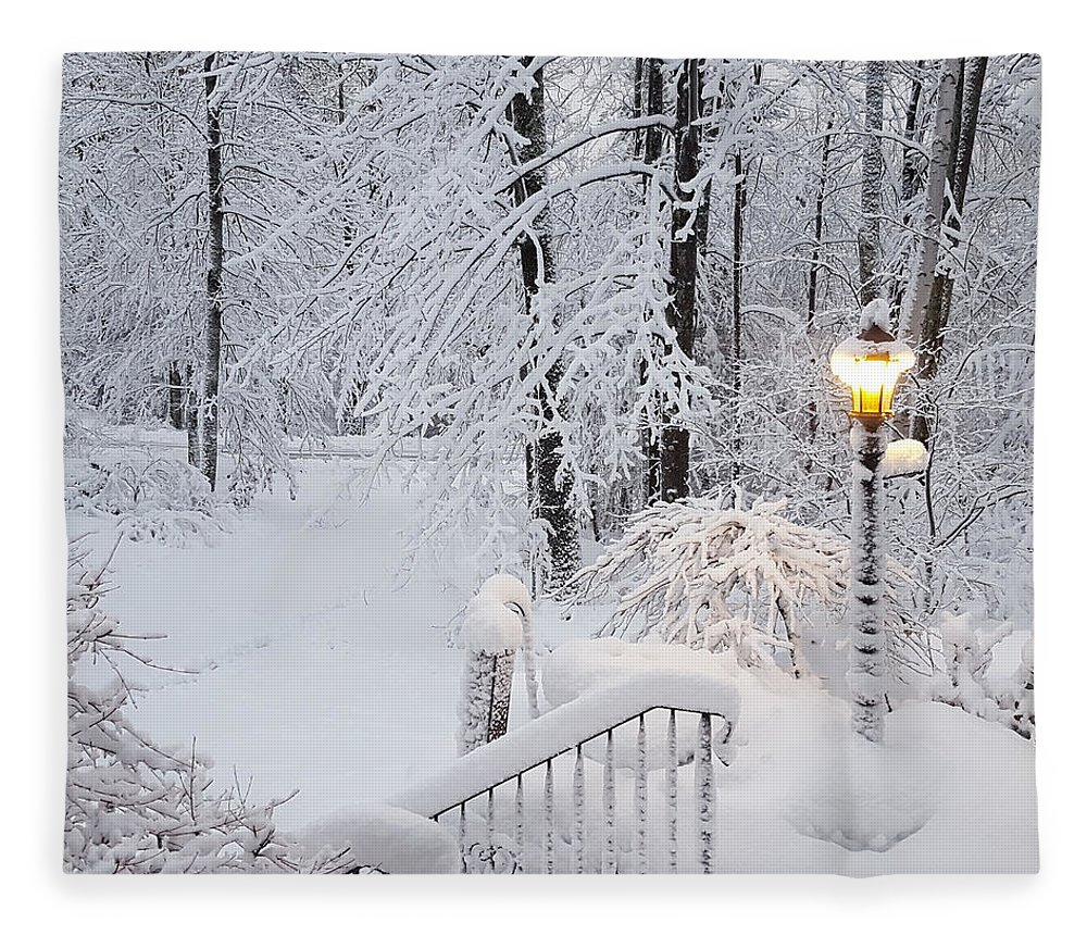 Winter Fleece Blanket featuring the photograph Winter by Trevor Slauenwhite