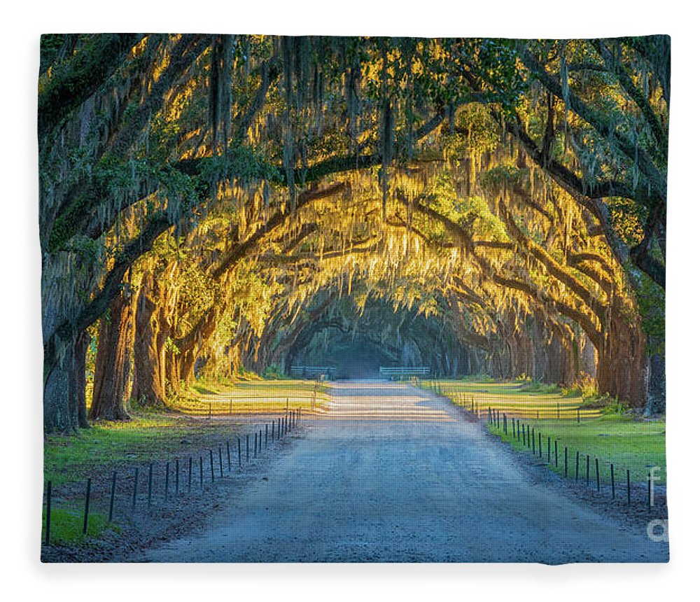 America Fleece Blanket featuring the photograph Wormsloe Historic Site by Inge Johnsson