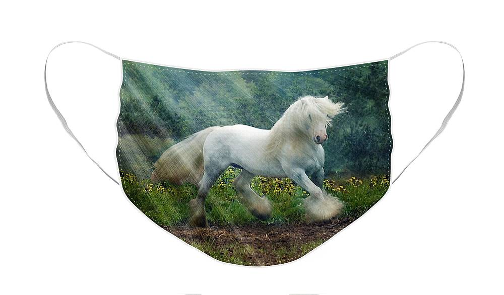 Horse Photographs Face Mask featuring the photograph Billy Rays by Fran J Scott