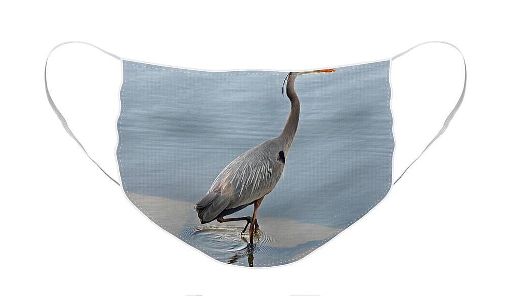 Heron Face Mask featuring the photograph Great Blue Heron V by Suzanne Gaff
