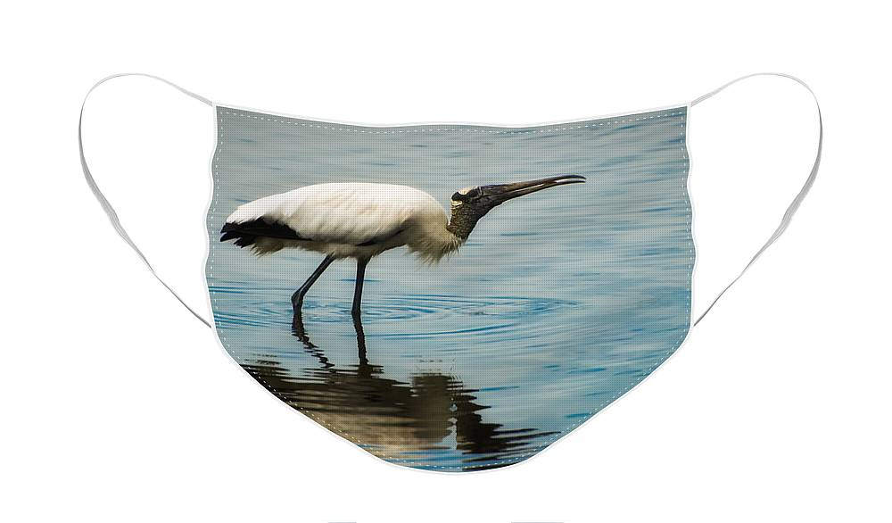 America Face Mask featuring the photograph Wood Stork by Rich Leighton