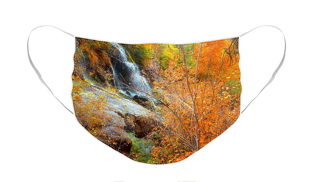 Autumn Face Mask featuring the photograph An Autumn Falls by Tara Turner