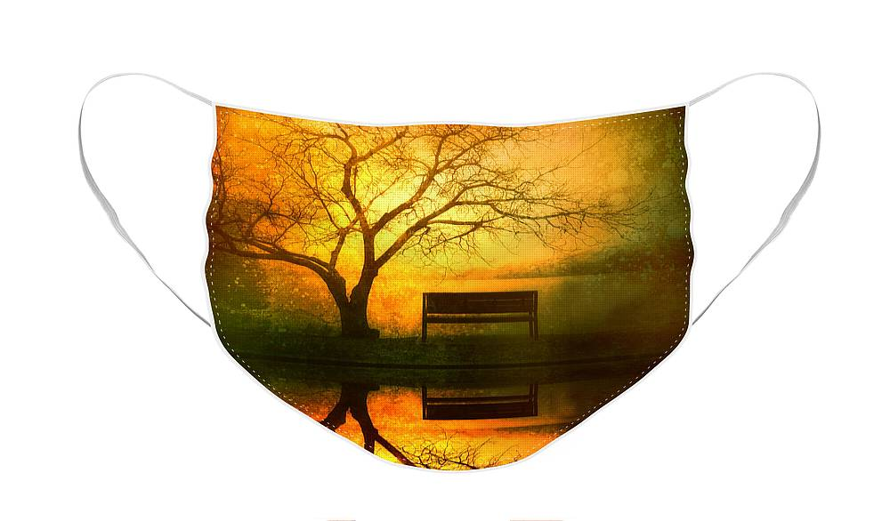 Bench Face Mask featuring the photograph And I Will Wait For You Until the Sun Goes Down by Tara Turner