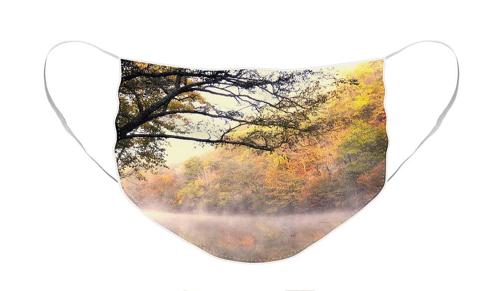 Fall Face Mask featuring the photograph Arching Tree On The Current River by Marty Koch