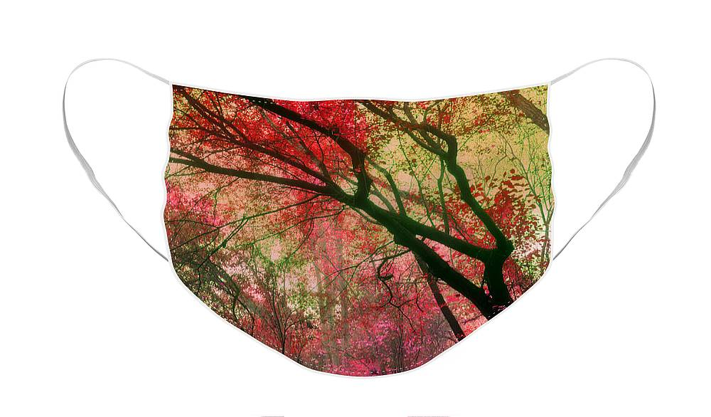 Red Face Mask featuring the photograph Autumn Dreams by Tara Turner