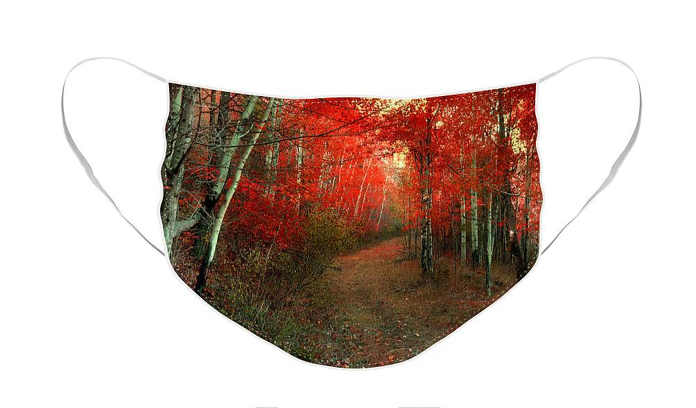 Tree Face Mask featuring the photograph Autumn Fire by Tara Turner
