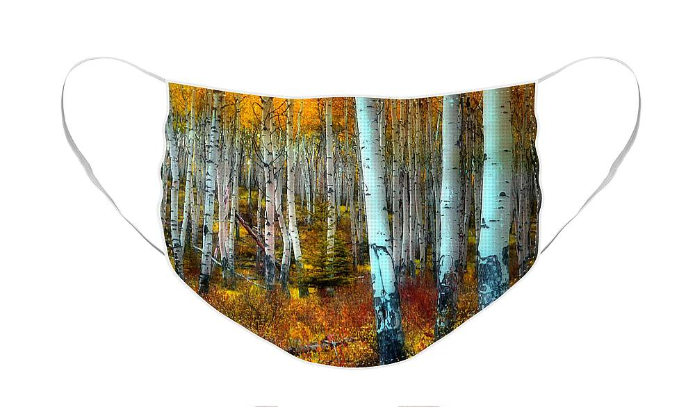Autumn Face Mask featuring the photograph Autumn in the Woods by Tara Turner