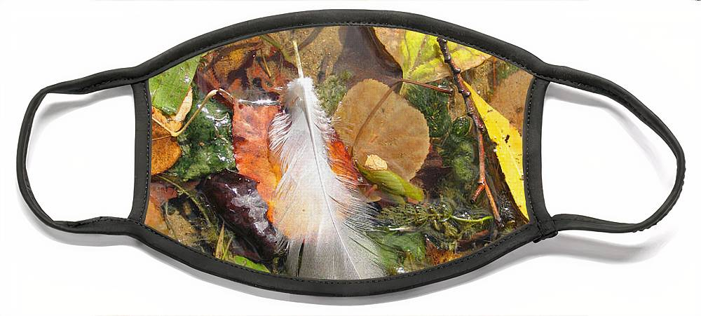 Autumn Face Mask featuring the photograph Autumn Leavings by Ann Horn