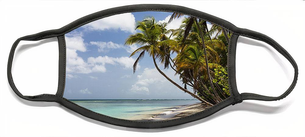 Konrad Wothe Face Mask featuring the photograph Beach Pigeon Point Tobago West Indies by Konrad Wothe