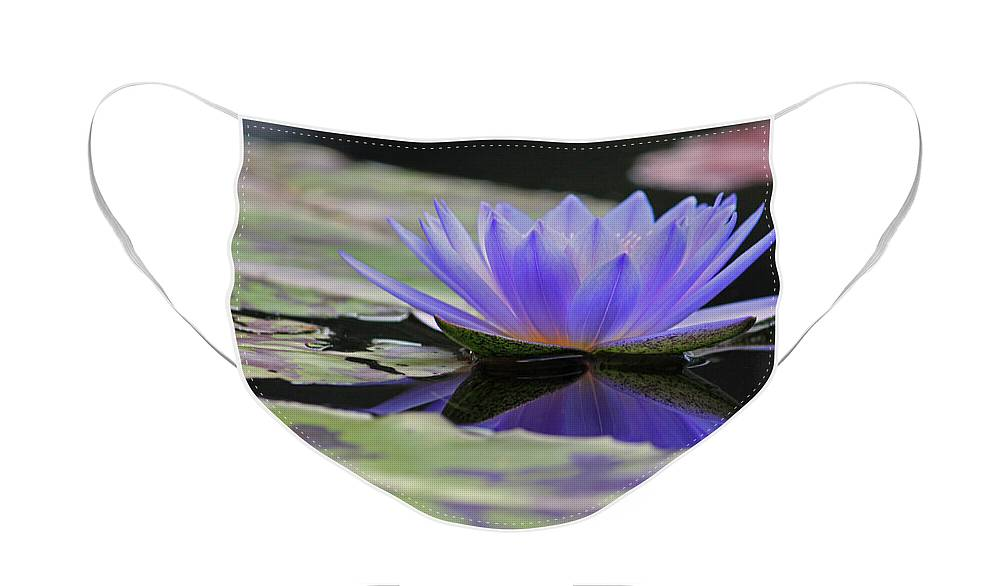 Water Face Mask featuring the photograph Blue Purple Dreams by Suzanne Gaff