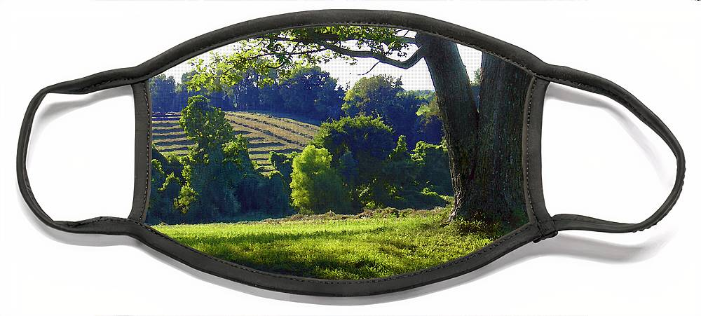Landscape Face Mask featuring the photograph Country Landscape by Steve Karol
