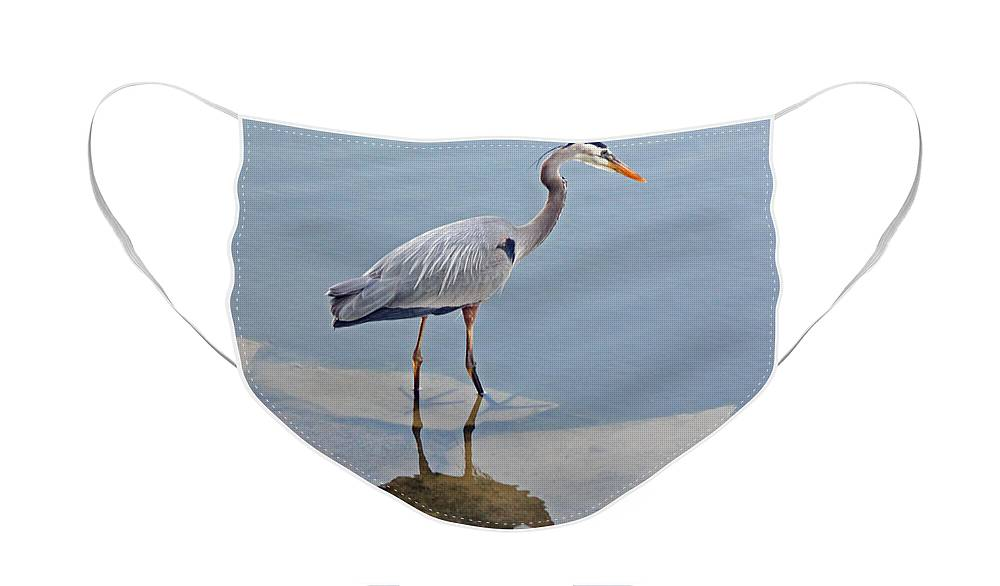 Heron Face Mask featuring the photograph Great Blue Heron I by Suzanne Gaff