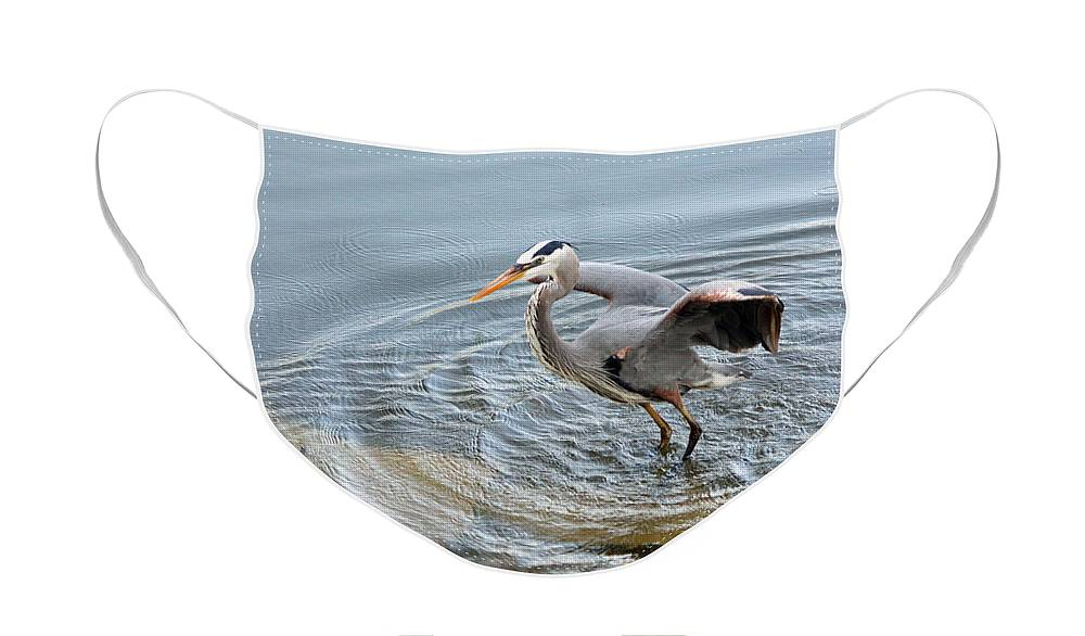 Great Blue Heron Face Mask featuring the photograph Great Blue Heron IV by Suzanne Gaff
