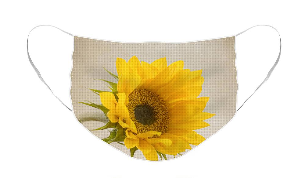 Sunflower Face Mask featuring the photograph I See Sunshine by Kim Hojnacki