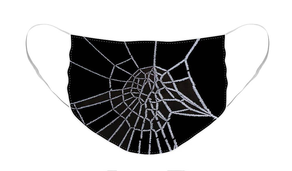 Ice Face Mask featuring the digital art Ice web by Carol Lynch