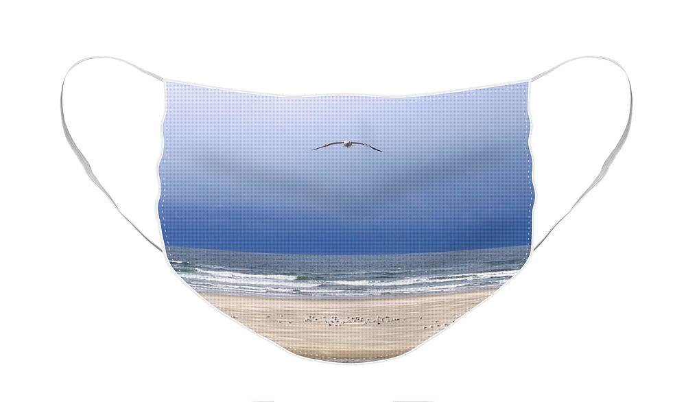 Incoming Seagull Face Mask featuring the photograph Incoming Seagull by Will Borden
