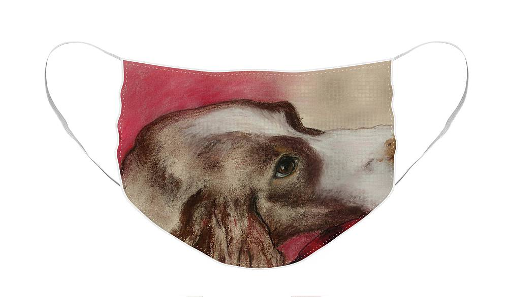Springer Spaniel Face Mask featuring the drawing Jourdan by Cori Solomon
