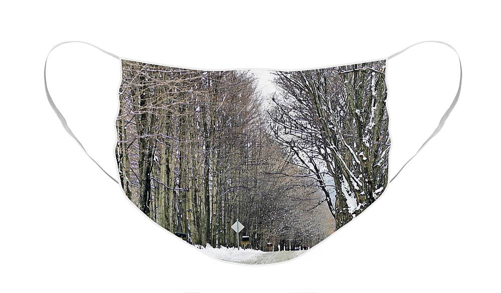 Winter Face Mask featuring the photograph Long Country Road by Deborah Benoit