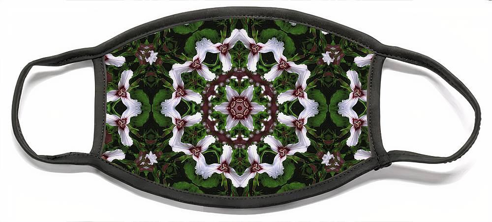 Mandala Face Mask featuring the digital art Mandala Trillium Holiday by Nancy Griswold