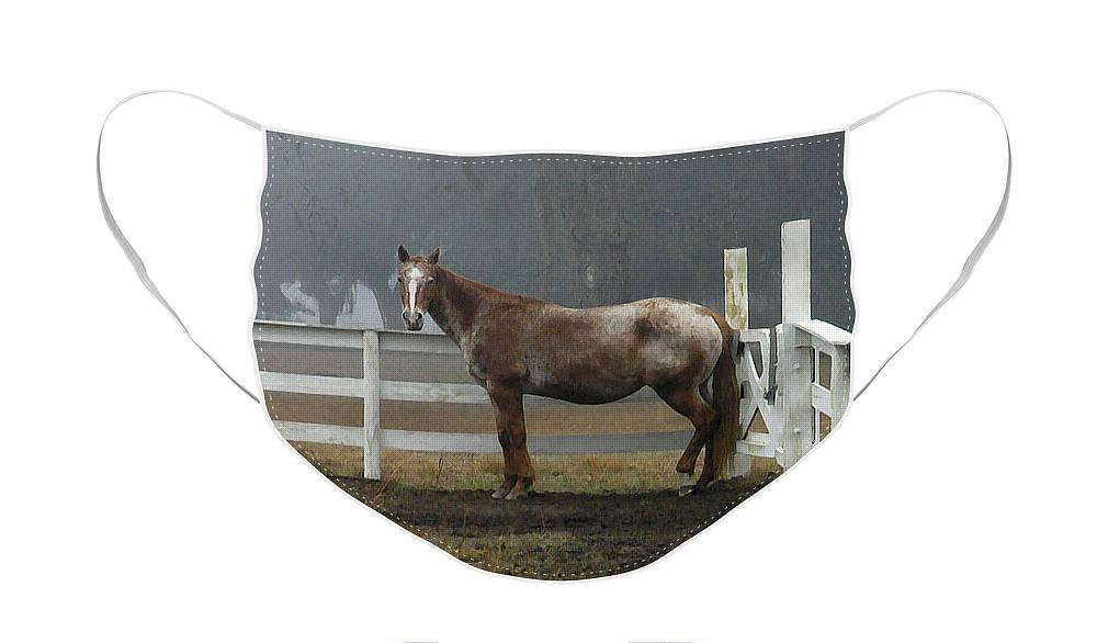Horse Face Mask featuring the photograph Morning Stance by Scott Hansen