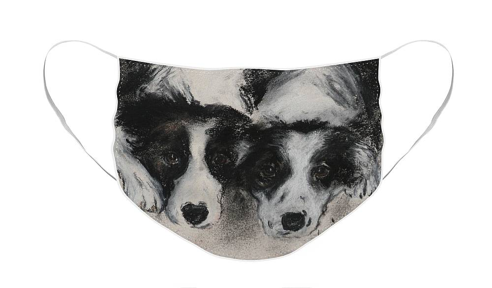 Border Collie Face Mask featuring the drawing On The Border by Cori Solomon