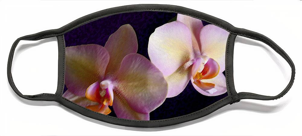 Orchid Face Mask featuring the photograph Orchid Light by Steve Karol