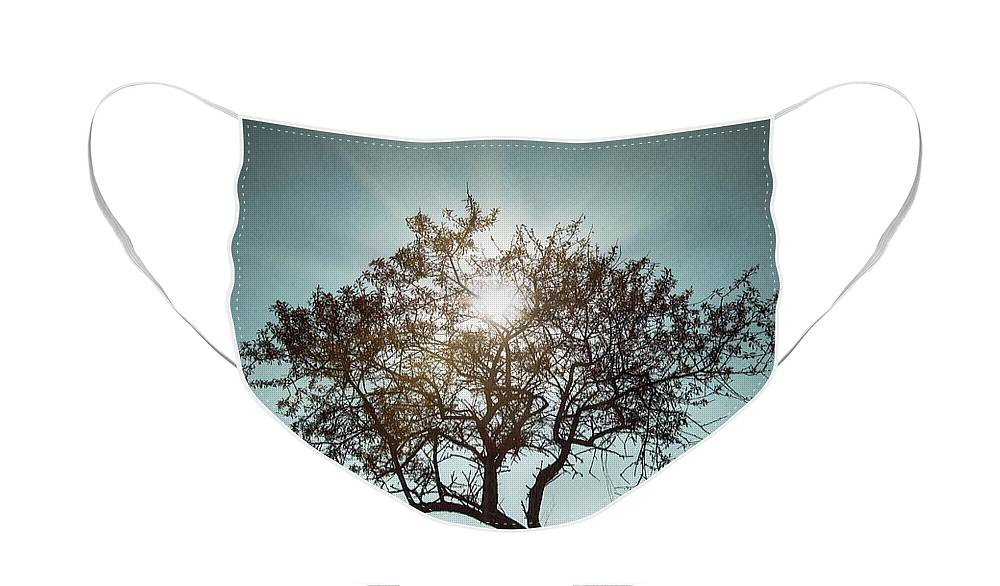 Dark Face Mask featuring the photograph Single Tree by Carlos Caetano