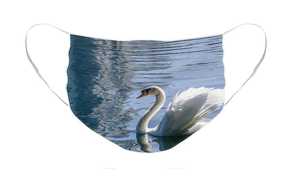 Swan Face Mask featuring the photograph Swan by Steven Sparks
