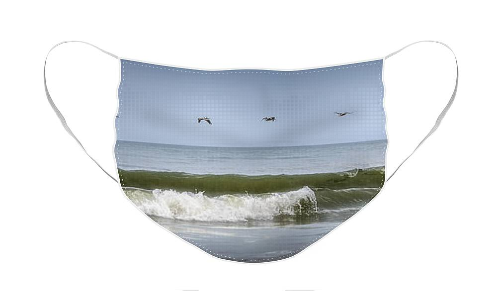 Seascape Face Mask featuring the photograph Ten Pelicans by Steven Sparks