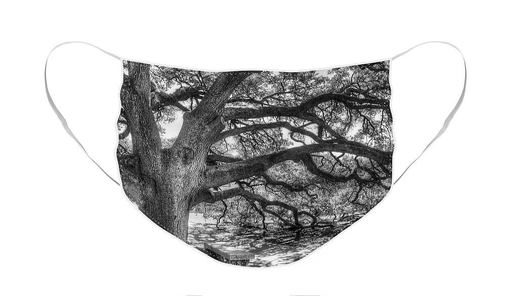 Oak Face Masks