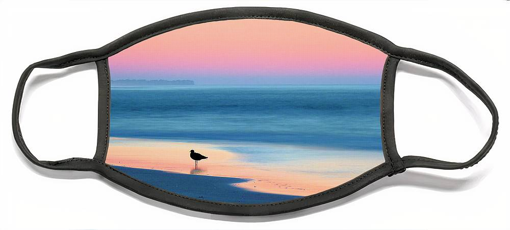 Beach Face Mask featuring the photograph The Day Begins by JC Findley