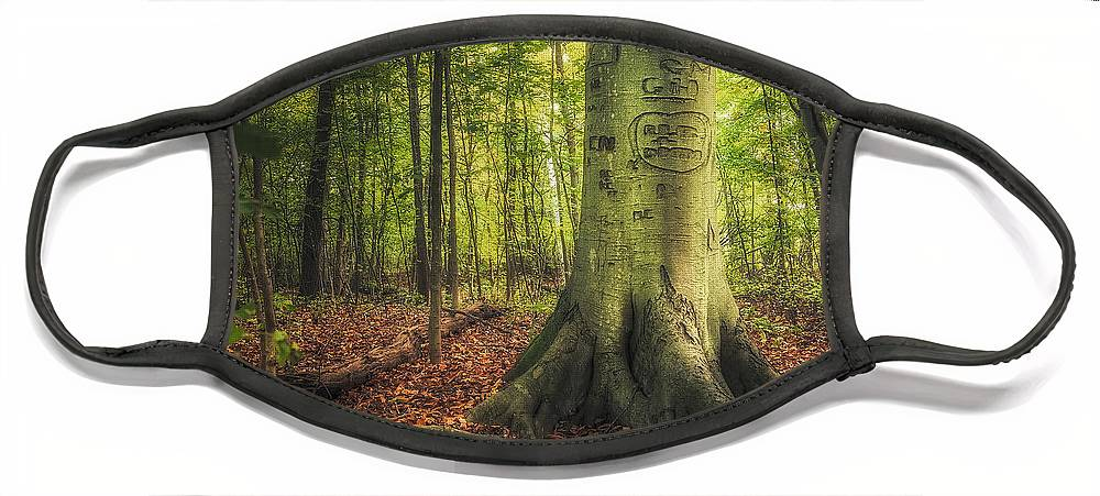 Tree Face Mask featuring the photograph The Giving Tree by Scott Norris
