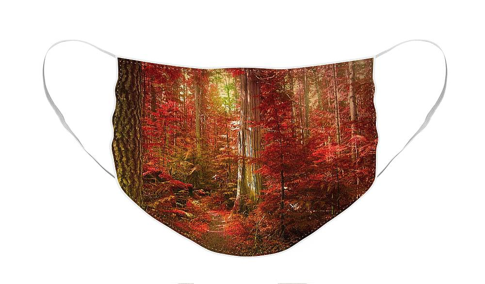 Trees Face Mask featuring the photograph The Mystic Forest by Tara Turner