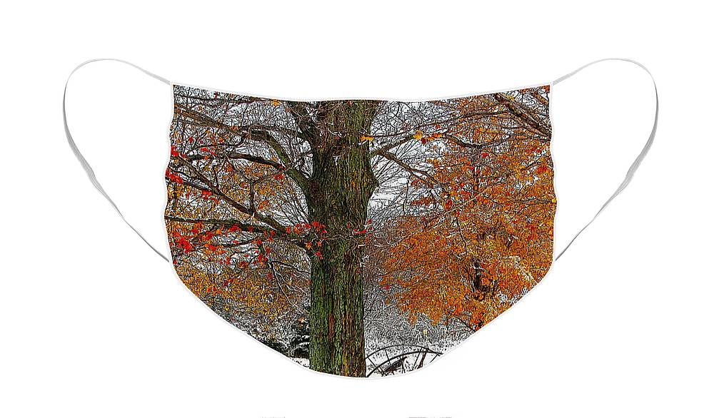 Berry Face Mask featuring the drawing To everything there is a season... by Diane E Berry