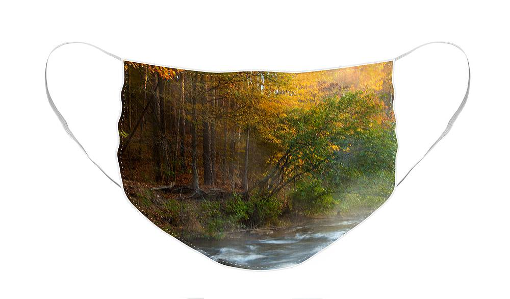 Landscape Face Mask featuring the photograph Tranquil Morning by Iris Greenwell