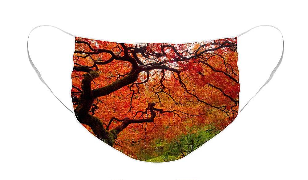 Portland Face Mask featuring the photograph Tree Fire by Darren White