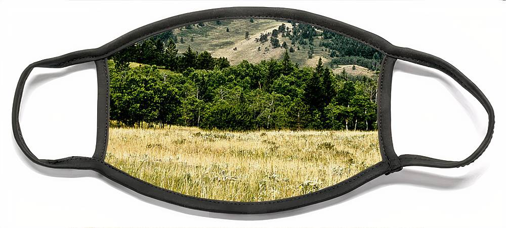 Wilderness Face Mask featuring the photograph Washake Wilderness by Kathy McClure