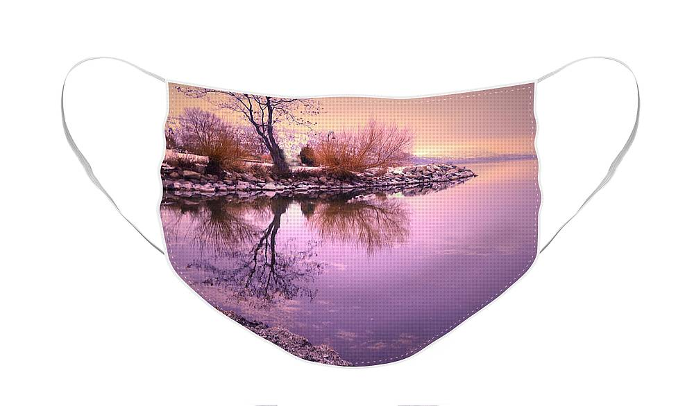 Winter Face Mask featuring the photograph Winter Light Reflected by Tara Turner