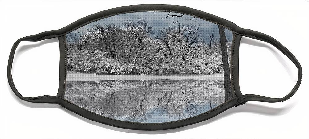 Winter Landscape Face Mask featuring the photograph Winters Delight 6 by Cedric Hampton