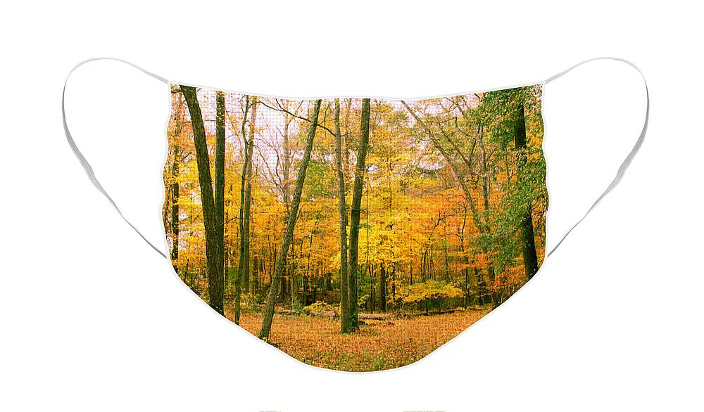 Trees Face Mask featuring the photograph Yellow Wood 3 by Paul Anderson