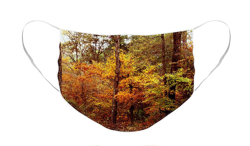 Trees Face Mask featuring the photograph Yellow Wood by Paul Anderson