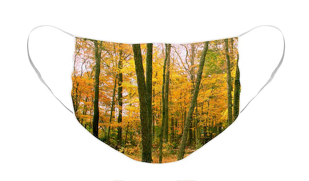 Fall Face Mask featuring the photograph Yellow Wood Vertical by Paul Anderson