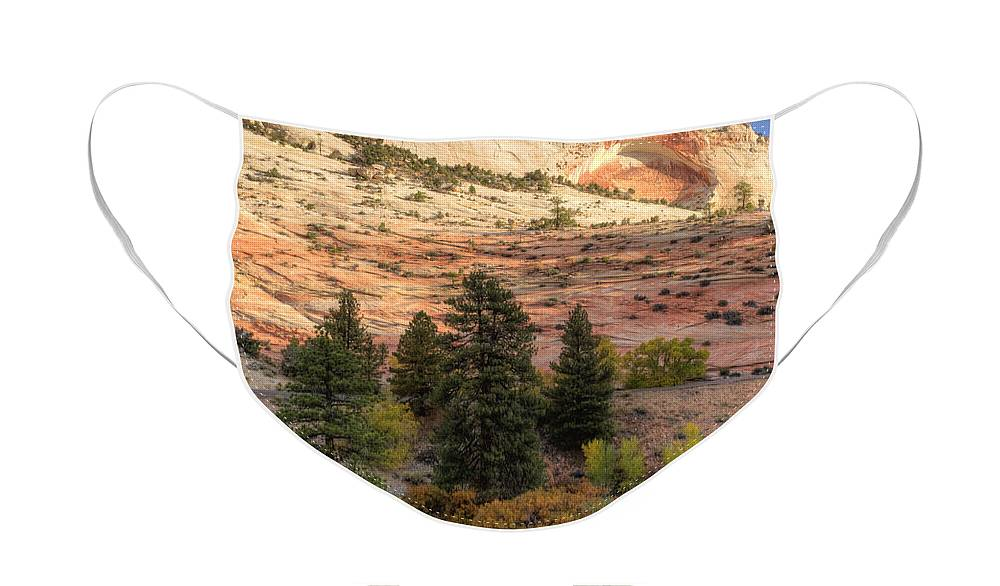 Hdr Face Mask featuring the photograph East Zion Canyon HDR by Sandra Bronstein