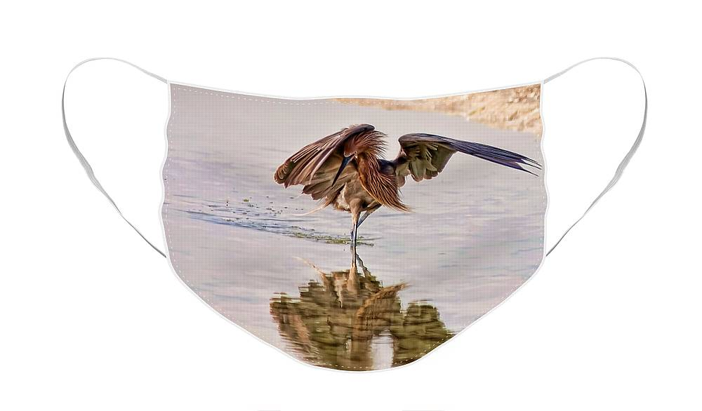 Bird Face Mask featuring the photograph Attack Dance by Steven Sparks