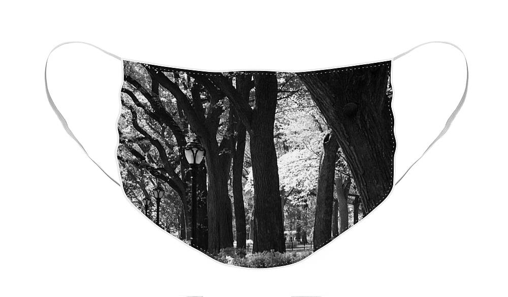 Black And White Face Mask featuring the photograph BENCHES TREES and LAMPS in BLACK AND WHITE by Rob Hans