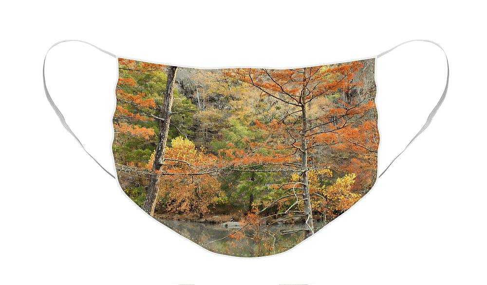 Landscape Face Mask featuring the photograph Cypress Trees in the Morning Light by Iris Greenwell