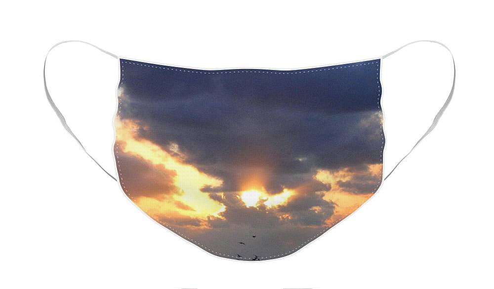Seagulls Face Mask featuring the photograph Seagulls And A Glorious Sky by Will Borden