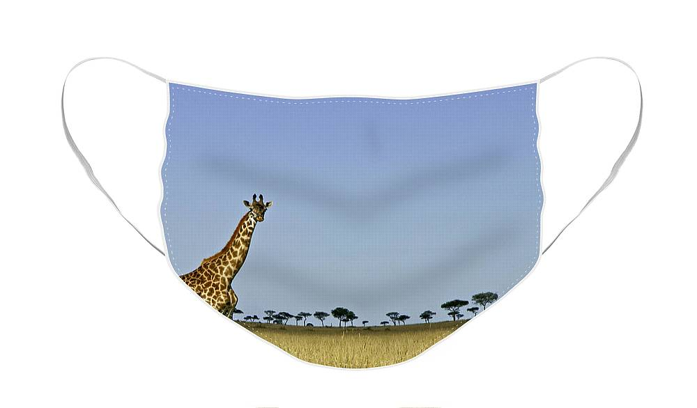 Africa Face Mask featuring the photograph Majestic Giraffe by Michele Burgess